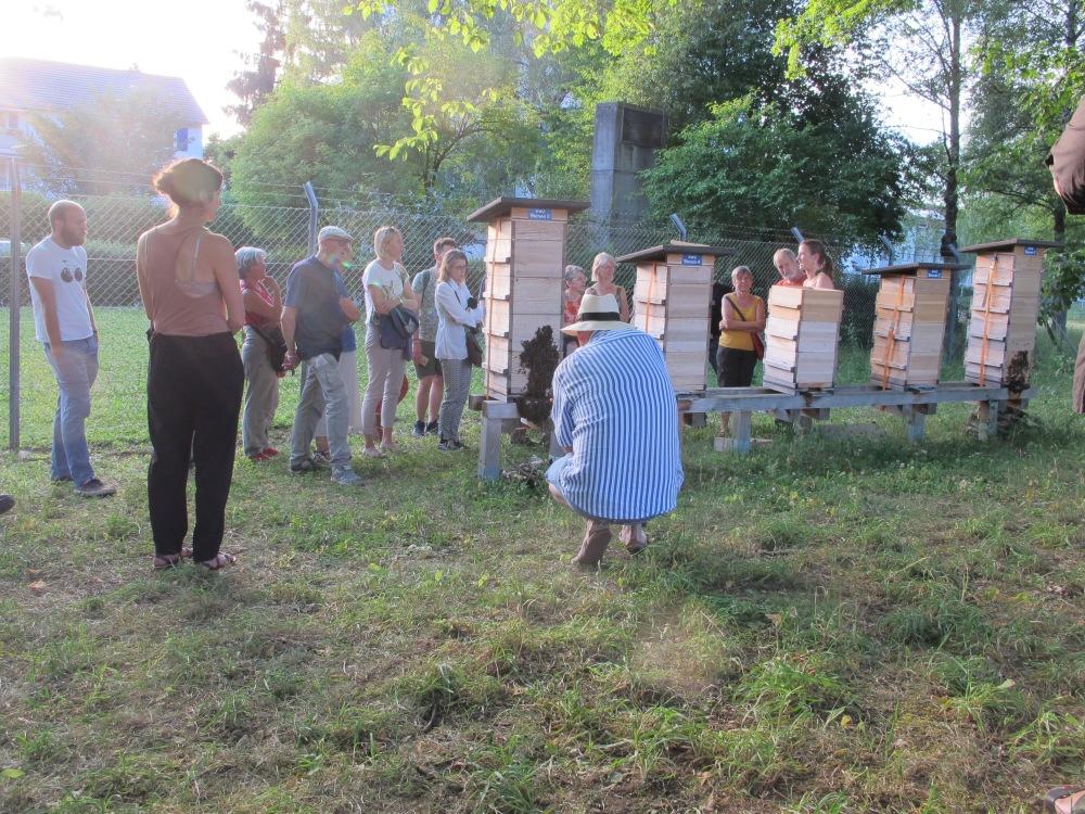 Strom und Bienen sh32