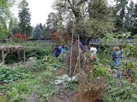 Der Garten wird auf Igelfreudlichkeit untersucht.